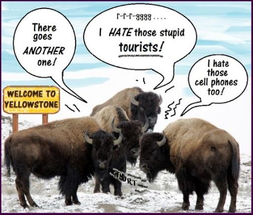 bison_snort